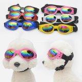 Occhiali da sole protettivi UV dell'animale domestico del cagnolino all'ingrosso, cane Eyewear