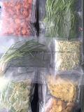 Dessiccateur végétal de vide de micro-onde de fruit de nourriture en forme de boîte de Kwzg