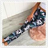 昇華によって印刷される女性ヨガのズボン