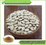 Wax Gourd Seed Extract Powder