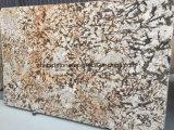 Losa amarilla al por mayor del granito del Brasil para el azulejo del material de construcción (doctor de oro)