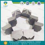 De Matrijs van de Spijker van het Carbide van het wolfram