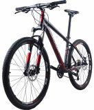 Bici de montaña adulta caliente del acero de carbón de la venta