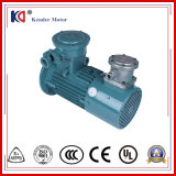 Motor de C.A. elétrico da Ex-Prova com movimentação variável da freqüência