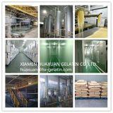 Gelatina de Halal para Yugurt