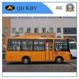 [6.6م] [سكهوول بوس] ديزل حافلة رف [سكهوول بوس]