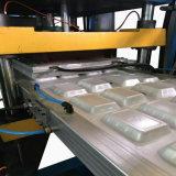 Contenitore di alimento del contenitore di alimenti a rapida preparazione della gomma piuma di PS di vuoto di tecnologia che fa macchina