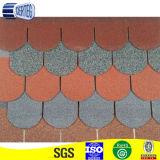 L'asfalto leggero di doppi strati copre di tegoli la fabbrica