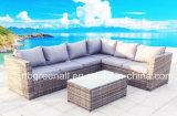 Rota al aire libre/conjunto de mimbre del jardín del sofá
