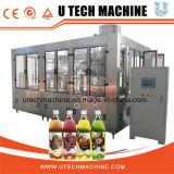 La serie Rcgf jugo embotellada/ té caliente máquina de llenado (Serie RCGF)