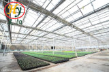 Aluminum Profile Hollow Tempered Glass Greenhouse