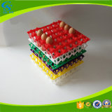 Colorful Stackable plastic duck Egg Tray