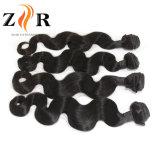 Virgem Wholesales Cabelo humano tecem Encaracolado Peruano Extensão de cabelo humano