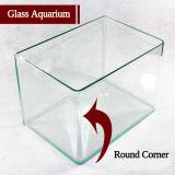 Square Aquarium Aquário de vidro