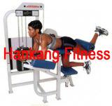 A força comercial Fitness, equipamentos para ginástica, Glute (PT-419)