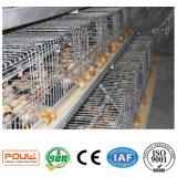 작은 병아리를 놓기를 위한 산업 강철 닭 감금소 닭장