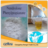 Heißer Salessteroid PuderNandrolone Decanoate Deca für Einspritzung oder orale Medizin