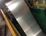 Premier Tôles en acier inoxydable laminés à froid 304 2b avec du papier