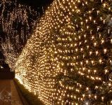 Estrella encendida minúscula ligera neta de la Navidad LED para la decoración al aire libre