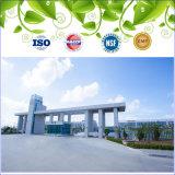 Le GMP a certifié le gel mou de ginseng de fines herbes d'extrait de supplément diététique