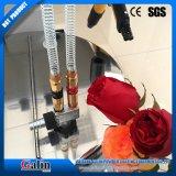 Rivestimento della polvere di Electroc del metallo di Galin/strumentazione manuali vernice/dello spruzzo (TCL-3) con la pistola manuale