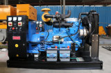 Ricardo-Serien-Dieselmotor-intelligenter Controller-bewegliches Dieselkraftwerk 50kw