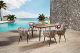 Textilene Weaving Outdoor Furniture Flesh and Table