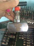 ねじ端のステンレス鋼の針弁