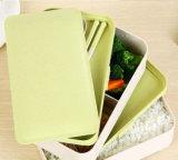 BPA ecologici liberano 2 strati di Bento della casella di pranzo sulla vendita con il materiale della fibra della paglia del frumento