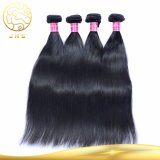8A加工されていない直毛のバージンの人間のブラジルのRemyの毛