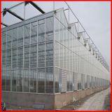 販売のための農業のマルチスパンのVenloのポリカーボネートシートの温室