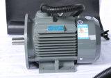 11kw 비동시성 모터 15kw H160 3 단계 압축기를 위한 경량 AC 감응작용 전기 모터