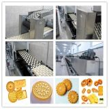 De nieuwe Machines van de Fabricatie van koekjes van Ontwerpen in zeer Lage Prijs