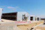 Het geprefabriceerde Huis van het Gevogelte met de Structuur van het Staal en Automatische Apparatuur