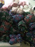 Tecido de champanhe Lace Rolo, Champanhe Padrão floral de tecido de malha de renda para decoração