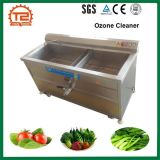 Industrial Vegetable and Fruit Ozone Washer Leaf Vegetable Washing Machine