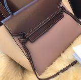 Handbagのデザイナー袋、女性袋、Bag (WDL0071)熱い販売法の女性方法女性