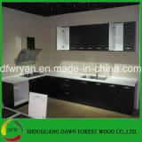 光沢度の高い食器棚の単位の流しベース壁の食器棚のドアの食器棚