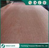 Pegamento WBP Decoración comercial y de buena calidad de madera contrachapada de 1220x2440mm