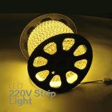 Indicatore luminoso di striscia impermeabile di RGB 5050 esterni LED della decorazione di AC110V 220V