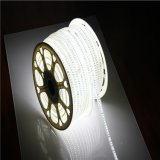 12V 120 LED/M Edgelight 5730 Fila doble TIRA DE LEDS