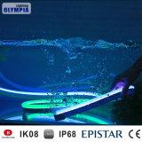 De digitale 5050 RGB Adresseerbare LEIDENE van gelijkstroom 24V DMX512 Strook van het Neon