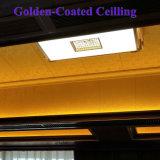 Stratifiés Stype européenne plafond décoratif et panneau mural