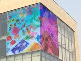 Schermo di visualizzazione esterno del LED di colore completo di P5.7/P6.6/P8/P10mm per fare pubblicità