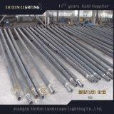 屋外の照明コラム鋼鉄によって電流を通されるランプのポスト