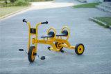 Apparatuur van de Speelplaats van de Ruiters van de Spelen van kinderen de Plastic Binnen (yl-TC001)