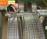 Usine en accordéon de barbelé de fil de rasoir galvanisée par qualité/rasoir