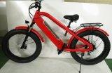 Hola bici gorda eléctrica 750W de la suciedad de la bici de la montaña de la potencia