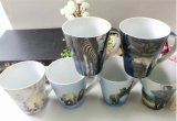 350ml flor nueva taza de China del hueso para la leche, Drinkware Tazas De Café