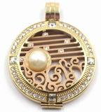 Locket superiore strutturato con le monete variabili per la collana Pendant